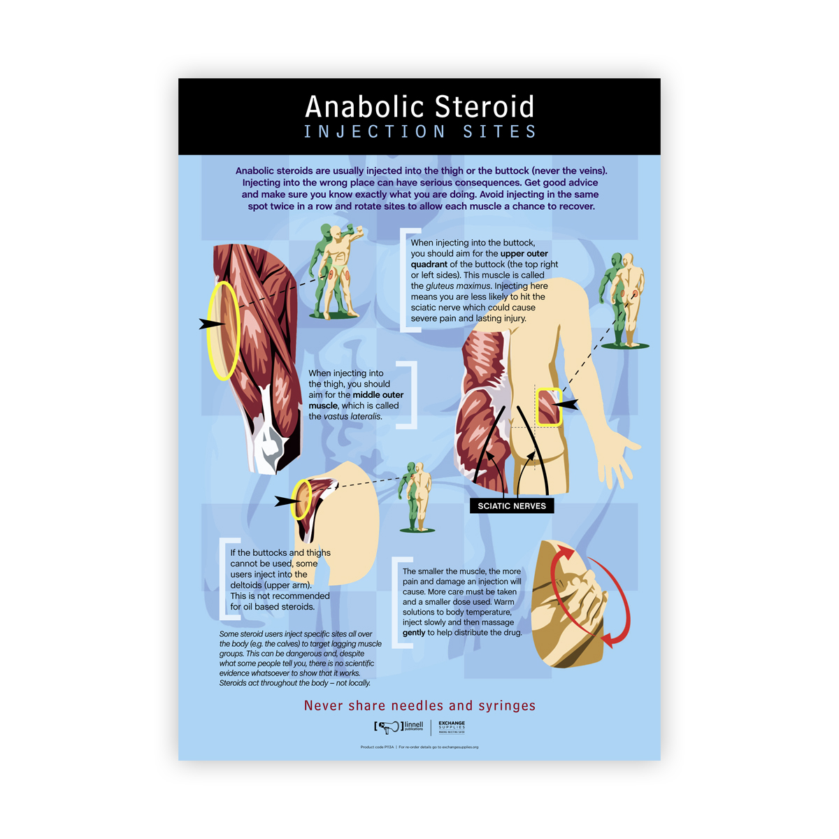 Anabolic Steroid Injection Sites Poster (Australian Edition)